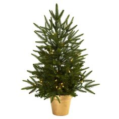 2.5Ft Christmas Tree w/Golden Planter and Clear Lights