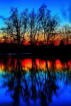 Radiant Schematics of Colors with Sunset and reflection of Tailored Trees!