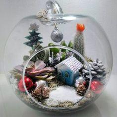TERARYUM PERİSİ Yılbaşı Teraryumu New Year Teraryum