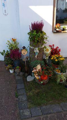 Herbstliche Ecke im Hof