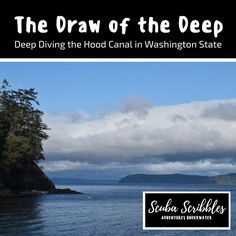 The Draw of the Deep by Candice Landau | Scuba Scribbles