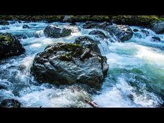 Wild Whitewater River Rapids: Washington States Nooksack River (HD)
