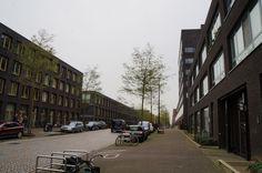 благоустройство улицы вдоль монотонных фасадов