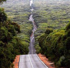Green Road #isadoreapparel #roadisthewayoflife #cyclingmemories