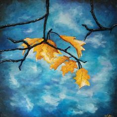Fusion Art, Galvan, Blue Backgrounds, Adult Coloring, Autumn Leaves, Art Pieces, Fine Art, Videos, Painting