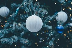 Holiday Survival Guide http://www.forwardkindheart.com/myblog/2015/11/30/surviving-the-holidays