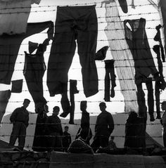 Werner Bischof    Korean War. Island of Koje Do. A camp for North Korean prisoners of war. Laundry hanging on the barbed wire. South Korea, 1952