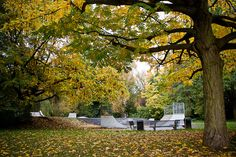 autumn skate ramp by Marco Nedermeijer, via Flickr