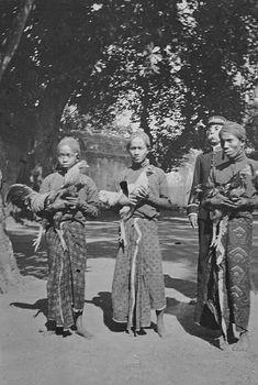 Javaanse mannen met hanen te Java. 1925
