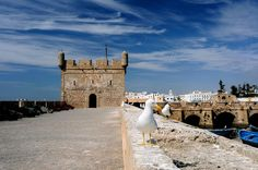 Essaouira   - Explore the World with Travel Nerd Nici, one Country at a Time. http://TravelNerdNici.com