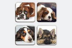 Puppies lying  Magnetic Coasters Including Wooden by elcomdesign