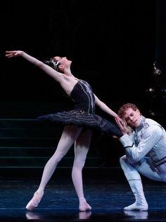 Swan Lake   The Australian Ballet Ballet Dancers, Ballerinas, Swan Lake Ballet, Ballet Dance Photography, Australian Ballet, Paris Opera Ballet, Ballet Companies, Svetlana Zakharova, Ballerina Project