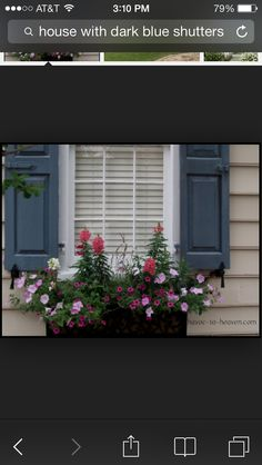 Charleston Window Boxes - thinking about window boxes for the back of the house.adding a layer! Navy Shutters, House Shutters, House Siding, Window Shutters, Outdoor Shutters, Exterior Paint Colors, Exterior House Colors, Paint Colors For Home, Tan House