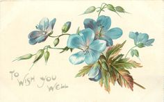"""To wish you well"" blue flax, by Catherine Klein ~ 1907."
