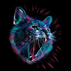 cat t shirt design