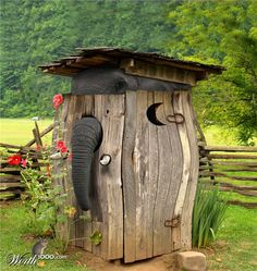 Elephant Trunk and bulging outhouse sides....does this mean there is an Elephant inside?