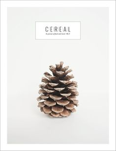 This is Cozy Modern @Cereal Magazine