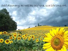 Self Discovery....