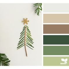 design seeds | search | for all who ♥ color ❤ liked on Polyvore featuring colour