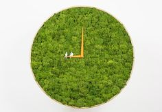 Living Moss Clock brings alpine tundra greenery into the home | Inhabitat - Sustainable Design Innovation, Eco Architecture, Green Building