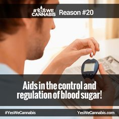 Aids in the control and regulation of blood sugar! - http://ywc.ec/why20  #YesWeCannabis