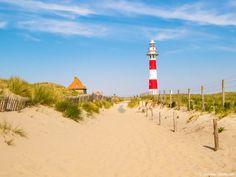 Urlaub mit Hund in Belgien: Erholung an schönen Sandstränden am Meer, Flüssen & Seen. Wandern im Hochmoor oder Reisen durch die Ardennen ...