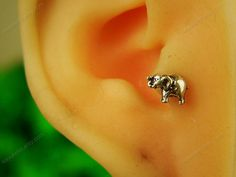 unique earrings elephant tragus earring sterling silver tragus stud tragus earrings, MSL005 on Etsy, $9.90