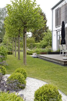 GARDEN – ballplatans, boxwood, grasses, larchwood, sliding shutters - All For Herbs And Plants Garden Cottage, Balcony Garden, Garden Planters, Boxwood Garden, Farm Gardens, Outdoor Gardens, Design Jardin, Modern Garden Design, Contemporary Garden