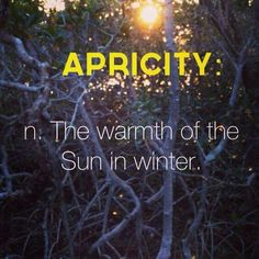 Apricity - the warmth of the sun in winter - Cool words - The Words, Fancy Words, Weird Words, Pretty Words, Cool Words, Beautiful Words In English, Awesome Words, New Words With Meaning, Word Meaning