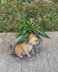 David Zinn at Whitmore Lake Elementary School, USA, 2020