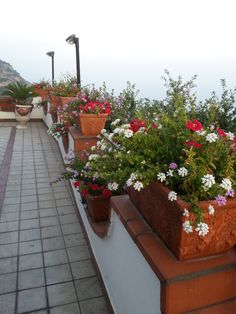 Our terrace full of flowers #ildolcetramonto   www.ildolcetramonto.it