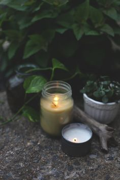 Mosquitoes are out again! Make some  homemade citronella candles. The natural way. Very Easy ! Via Freepeople. com
