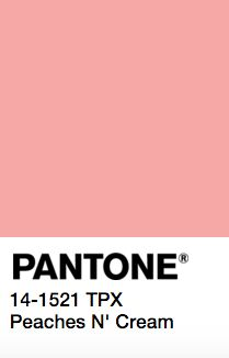 Pantone swatches of skin tone shade elements will display beautifully alongside the images of the foundation while still being readable. Here is a selection of 5 of my favorite ones Pantone Colour Palettes, Pantone Color, Pantone Paint, Pantone Swatches, Color Swatches, Colour Pallete, Colour Schemes, Shades Of Peach, Colour Board