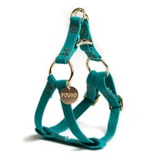 Teal Ombre Harness