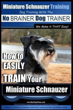 Miniature Schnauzer Training  Dog Training with the No BRAINER Dog TRAINER  We make it THAT Easy How to EASILY TRAIN Your Miniature Schnauzer Volume 1 >>> Want to know more, click on the image. (Note:Amazon affiliate link)