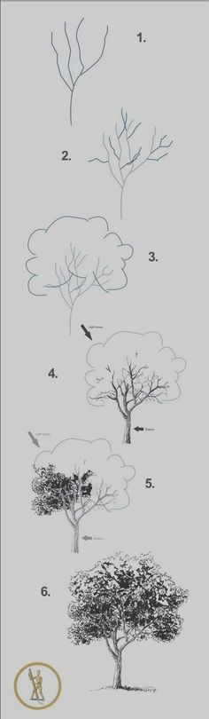 40 Easy Step By Step Art Drawings To Practice Comment dessiner un arbre (un feuillu) ? Drawing Lessons, Drawing Techniques, Drawing Tips, Drawing Sketches, Painting & Drawing, Drawing Ideas, Sketching, Sketch Ideas, Sketch Inspiration