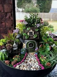 If you are looking for Diy Fairy Garden Design Ideas, You come to the right place. Here are the Diy Fairy Garden Design Ideas. This article about Diy Fai. Indoor Fairy Gardens, Fairy Garden Plants, Mini Fairy Garden, Fairy Garden Houses, Miniature Fairy Gardens, Succulents Garden, Fairy Gardening, Fairies Garden, Fairy Gardens For Kids