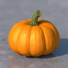 Pumpkin Model available on Turbo Squid, the world's leading provider of digital models for visualization, films, television, and games. Vegetables Photography, Fruit Photography, Still Life Photography, Reference Photos For Artists, Art Reference, Image Fruit, Still Life Pictures, Vegetable Pictures, Vegetable Painting