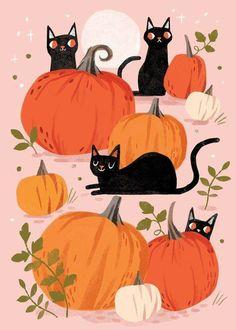 Theme Halloween, Halloween Cat, Vintage Halloween, Halloween Decorations, Cute Halloween Drawings, Halloween Witches, Halloween Prints, Happy Halloween, Autumn Illustration