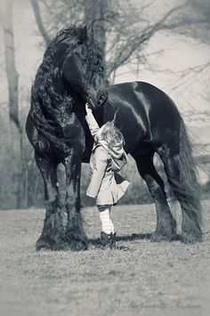 Wow. Giant horse with a delicate small child. I believe this must've been a gentle giant to not run or kick to allow this child to touch them. Because horses can get skittish. Pray the child was ok and the horse didn't hurt this sweet little angel. The blonde in the pic.