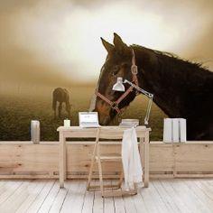 Vlies Fotobehang Early Horse