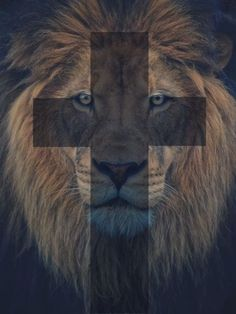 The Lion of Juda