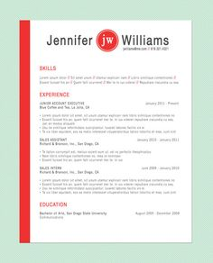 Customized Resume: The Visionary