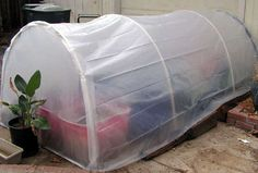 Mini greenhouse, build one for about $25.