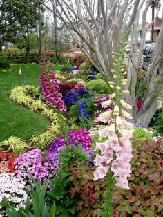 Cottage Gardens - Loose, casual, charming, and full of colors year round. Outdoor Gardens, Indoor Gardening, Organic Gardening, Cottage Gardens, Home And Garden, Dream Garden, Lawn And Garden, Garden Design, Flowers Garden