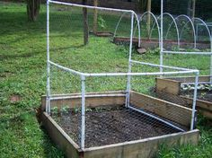 Many fantastic fencing/framing ideas including greenhouse, hoops, and this modification for use with a trellis. Great for keeping rabbits out!