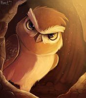 2.1 - Burrowing Owl (45 Minutes) Penalty by Cryptid-Creations