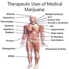 Therapeutic uses for Medical Marijuana!