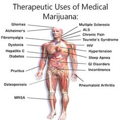 Therapeutic uses for Medical Marijuana!