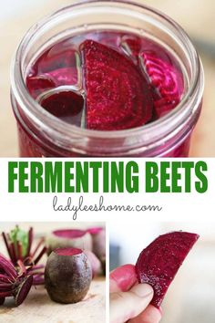 """Fermenting beets is a super-easy way to preserve your harvest and keep it """"fresh"""" for months. Fermented beets are also very healthy and so so tasty! Fermented Beet Recipe, Fermented Foods, Fermentation Recipes, Canning Recipes, Beet Recipes, Drink Recipes, Vegetarian Recipes, Recipies, Freezing Fruit"""